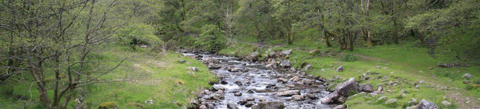 Brecon Beacons Mountain River